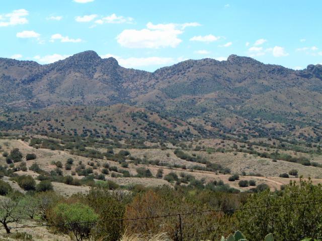 Rosemont Valley
